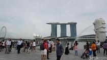 Sungguhan Terjadi di Singapura, Malu Bertanya Sesat di Jalan