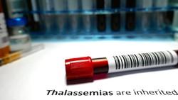 Thalasemia Hingga Hemofilia, Penyakit yang Risikonya Meningkat pada Incest