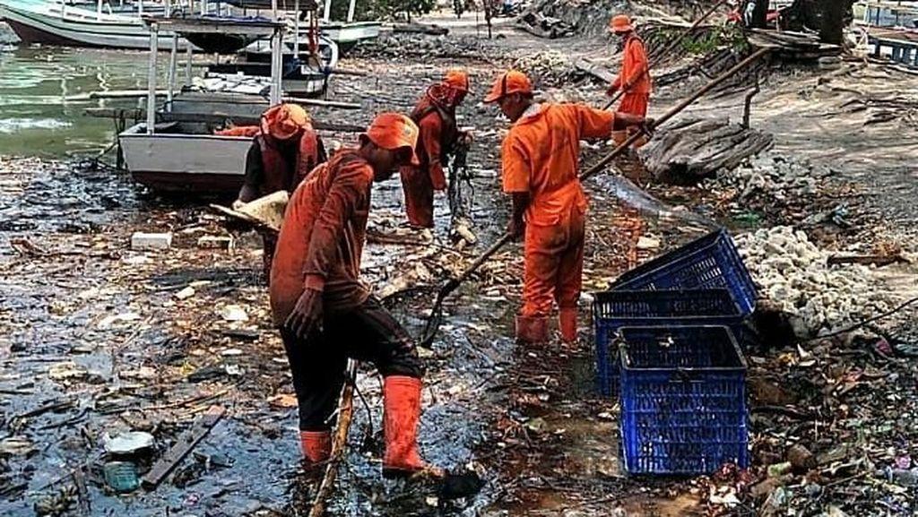 DLH DKI Bersihkan Sampah yang Diduga Bikin Penyu di Pulau Pari Mati