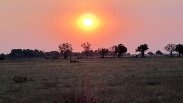 Saat sunset di Okavango yang juga bagian dari Gurun Kalahari. Daerah itu amat terkenal di Botswana. Tidak ada apapun di sana kecuali lapisan tipis rumput hangus (Tim Johnson/BBC Travel)