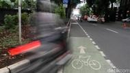 Jalur Sepeda Sudah Disediakan, Eh...Malah Diserobot buat Parkir Kendaraan