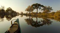 Tempat Safari Paling Dahsyat di Afrika: Botswana