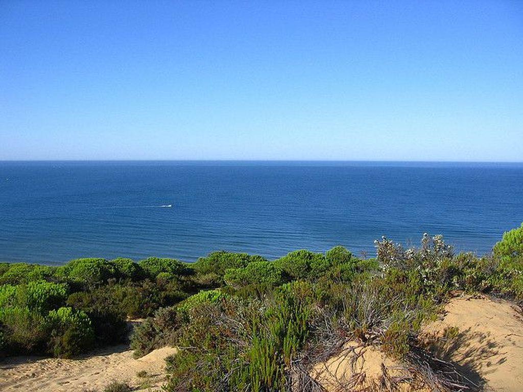 Lepas pantai di dekat Donana National Park, Spanyol, baru-baru ini diplot sebagai lokasi baru Atlantis. Foto: Getty Images