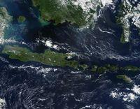 Ilustrasi laut