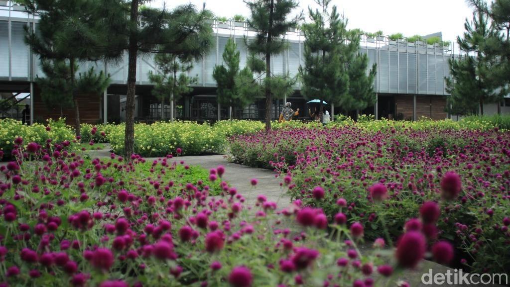 Tempat Wisata Instagramable di Tawangmangu Ini Dulunya Pabrik