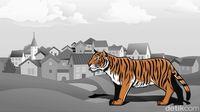 Petani Karet di Sumsel Ditemukan Tewas, Diduga Diterkam Harimau