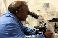 Ditemukan Bakteri Kotoran Manusia Pada Layar Sentuh Pesanan di McD Inggris