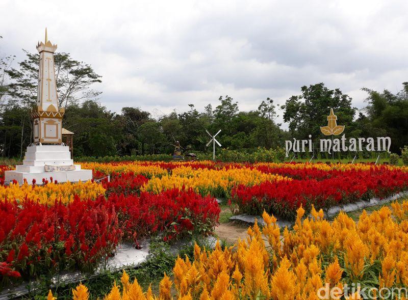 Ada satu tempat wisata baru di Yogyakarta, namanya Puri Mataram. Di sini, ada wahana taman bunga cantik yang mirip di Eropa. (Pradito/detikTravel)