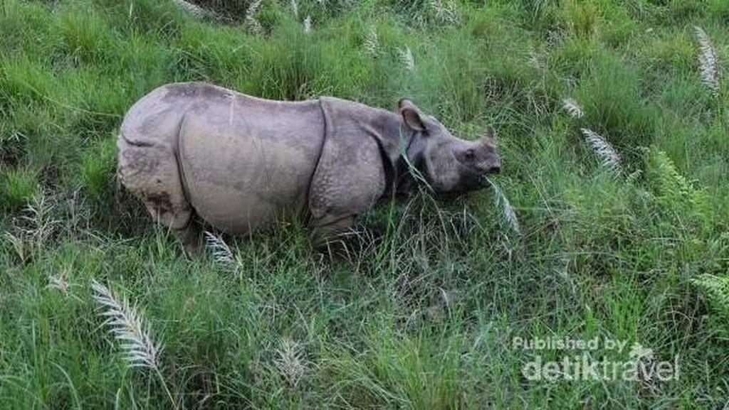 Kutinggalkan Hati untuk Nepal yang Memesona