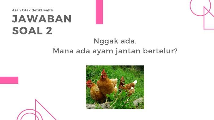 Karena yang bertelur hanya ayam betina, maka jawabannya tidak ada di mana-mana! (Foto: detikHealth)