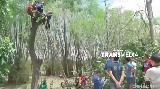 Video Penyelamatan Dramatis Pria yang Tersangkut di Pohon