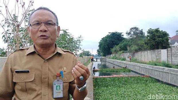 Pemkot Jakarta Utara Mulai Tanam Eceng Gondok di Kali Penghubung