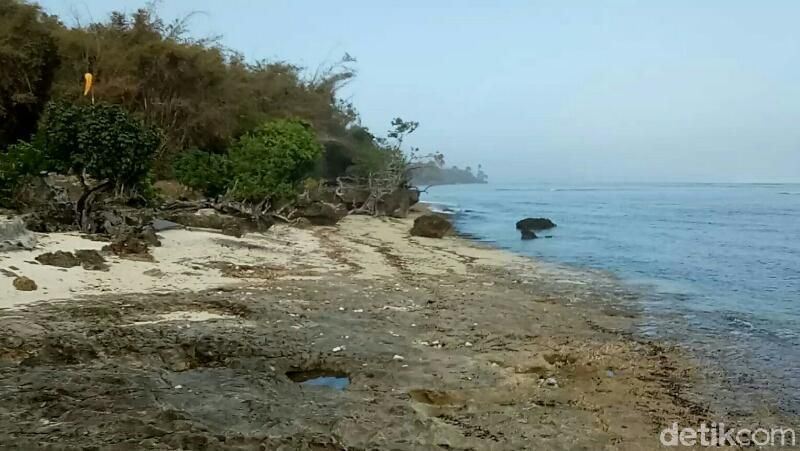 Pantai Plengkung menghadap Samudera Hindia, di timur Teluk Grajagan. Jaraknya 55 kilometer dari pusat Kota Banyuwangi, dan jadi salah satu destinasi tersembunyi yang masih terjaga keutuhannya. (Ardian Fanani/detikTravel)