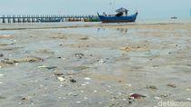 Lagi-lagi, Pantai Pasir Putih Rembang Ini Berlumpur dan Bau Busuk