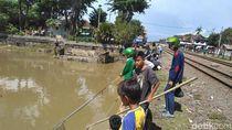 Ikan-ikan Mabuk Ini Berkah Bagi Warga Kali Jagir Surabaya