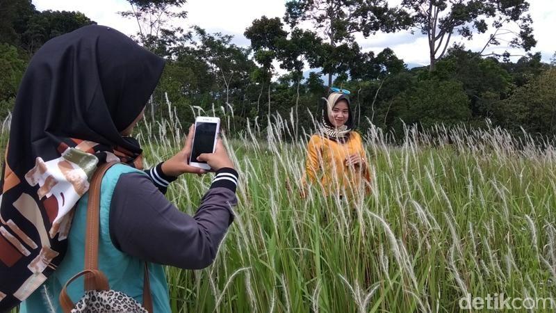 Inilah Padang Ilalang Bawen, letaknya berada di kawasan Balekambang, Desa Kandangan, Kecamatan Bawen, Kabupaten Semarang (Eko/detikTravel)