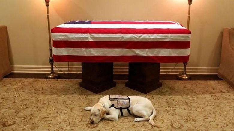 Bikin Terenyuh! Sully Setia Berjaga di Dekat Peti Mati Bush Senior