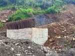Gerindra: Penyerangan KKSB Papua Harus Jadi Evaluasi TNI-Polri-BIN