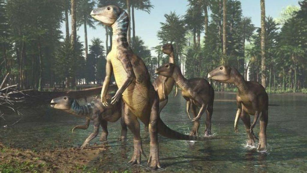Spesies Baru Dinosaurus Prasejarah Ditemukan di Australia