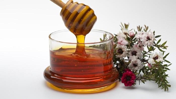 Manisnya madu diyakini menyimpan banyak manfaat (Foto: Istock)