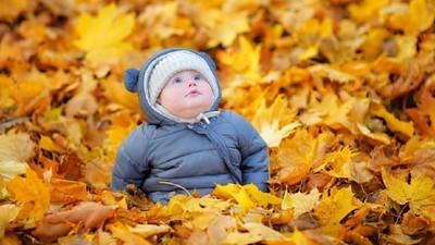 28 Nama Bayi Terinspirasi dari Musim Gugur