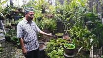 Melihat Kebun Kesayangan Nh Dini di Wisma Lansia