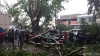 Kawasan Kota Bogor, Jawa Barat, sore ini dilanda puting beliung. Pohon tumbang di sejumlah titik dan menimpa kendaraaan.
