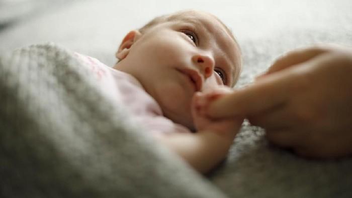 Ilustrasi bayi baru lahir. Foto: Instagram
