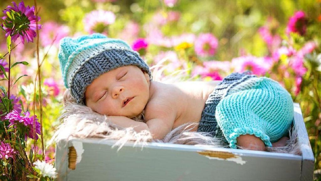 33 Nama Bayi Terinspirasi Kehangatan Musim Semi