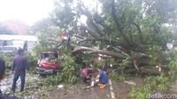 Titik kedua, di Jalan Siliwangi No 59 ada mobil Carry nopol F 1371 CH yang juga ringsek berat tertimpa pohon kenari.