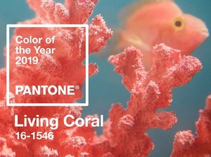 Ini Tren Warna 2019 dari Pantone: Living Coral