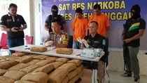 Pemilik-Penerima 130 Kg Ganja Aceh yang Dibawa 2 Oknum Polisi Diburu
