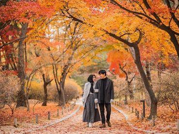 Image Result For Cerita Romantis Pernikahan