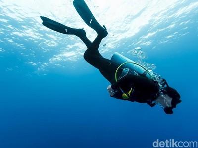 Asyik Dipandang! Panorama Bawah Laut Pantai Amed Bali