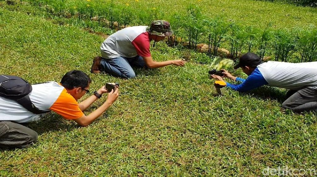 Video: Serunya Menjepret Objek ala Makro Fotografi