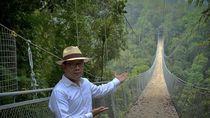 Ridwan Kamil Promosi Wisata Jembatan Gantung Situ Gunung