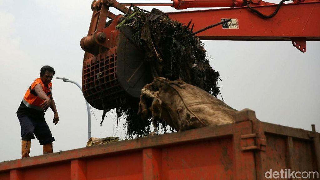 Pembersihan Sampah Dari Kanal Banjir Timur