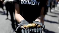 Tolak Kekerasan Hewan, Aktivis Unjuk Rasa Membawa Bangkai di Brasil