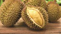Stoknya Melimpah di Singapura, Durian Musang King Turun Harga!