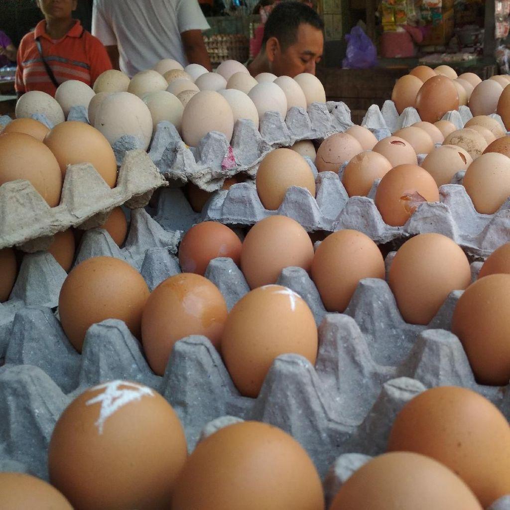 Para Pencinta Telur Mau Rayakan Rekor di Instagram, Caranya?