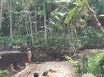 63 Rumah di Probolinggo Rusak Diterjang Banjir, 4 Jembatan Ambruk