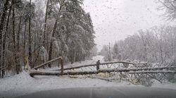 Dahsyatnya Salju Tebal yang Menimbun Beberapa Wilayah AS