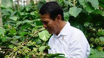 Meski Ada Isu Negatif, Ekspor Kebun RI 2018 Capai Rp 432 T