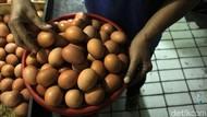 Janji Prabowo Turunkan Harga Telur 100 Hari Bikin Heboh