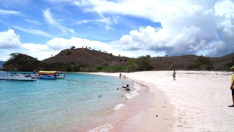 Foto: Pantai Pink di TN Komodo (Shinta/detikTravel)