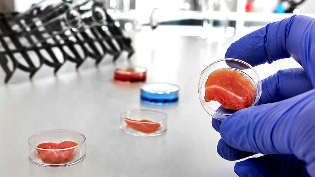 Daging Wagyu Rekayasa Akan Dibuat di Dalam Lab