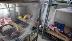 Obesitas saat ini menjadi masalah kesehatan serius di Dunia. Di China hal tersebut coba dihadapi dengan mendirikan kamp khusus untuk anak-anak yang kegemukan.