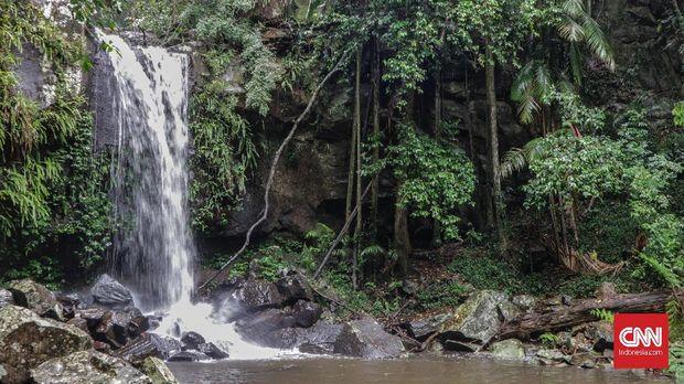 Menerjang Badai di Taman Nasional Tamborine*