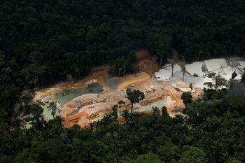 Brasil Tutup Tambang Ilegal yang Ancam Hutan Amazon