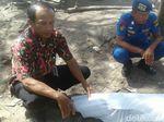 Lumba-lumba yang Mati di Kebumen Diduga Terkena Jaring Nelayan